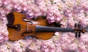 Koncert o zapachu wiosny